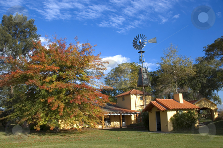 Rural Farmhouse in Autumn stock photo, A well-maintained colonial style farmhouse with a large autumn tree by Lee Torrens