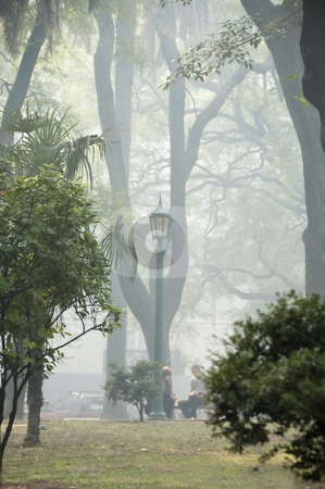 Park Mist stock photo, A smokey mist fills a city park by Lee Torrens