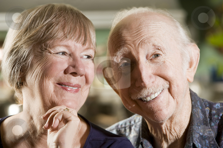Portrait of Senior Couple stock photo, Portrait of Senior Couple in their Dining Room by Scott Griessel