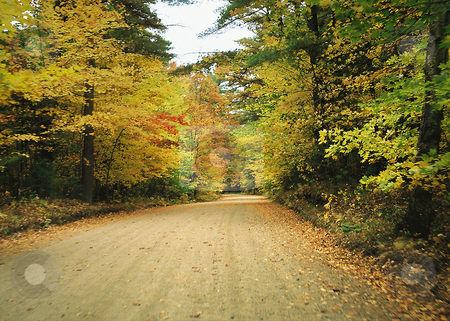 Fall colors_road through Minnesota autumn woods stock photo, The Norhern Minneota woods shows off its Fall colors to frame this sandy clay lake road. by Bruce Peterson