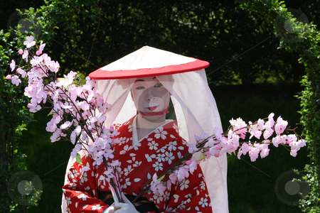 Japanese Geisha stock photo, A Japanese Geisha during the Japanese Cherry Blossom show by Ryan Bouie