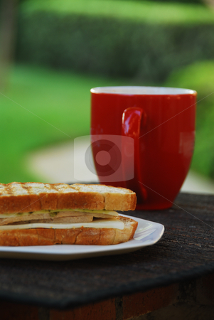 Panini in the Morning stock photo,  by Timothy OLeary
