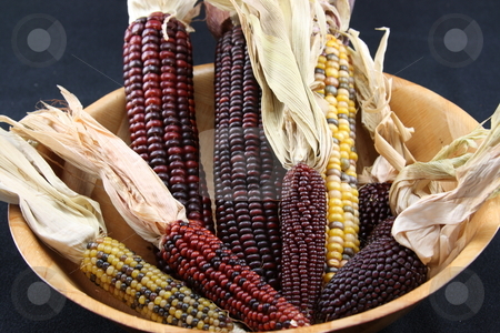 Bowl of Corn stock photo,  by George Botta