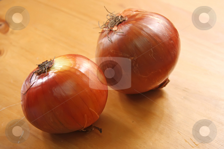 Raw onions stock photo, Two whole raw onions on wooden background by Kheng Guan Toh