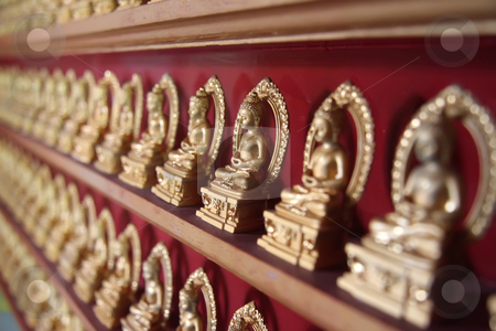 Rows of buddhas stock photo, Rows of golden buddha statues in Chinese temple by Kheng Guan Toh