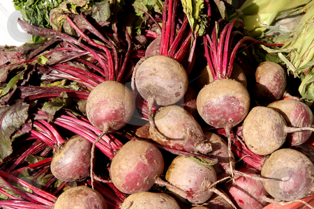 Whole beets stock photo, Pile of whole raw beet roots in the market by Kheng Guan Toh