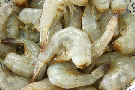 Whole raw prawns stock photo, Whole fresh raw prawns in shell unpeeled by Kheng Guan Toh