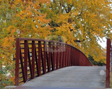 Bridge in Autumn stock photo, Walking bridge in Autumn by Heather Shelley