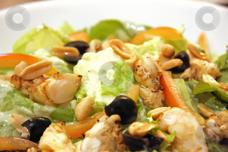 Lobster salad stock photo, Gourmet caesar's salad with rock lobster meat by Kheng Guan Toh