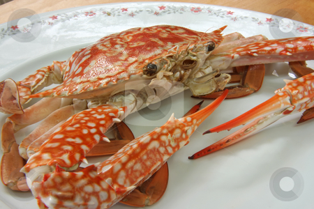 Cooked crab stock photo, Whole fresh cooked king crab on plate by Kheng Guan Toh