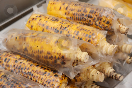 Corn on the cob stock photo, Grilled roasted corn on the cob wrapped ready to eat by Kheng Guan Toh