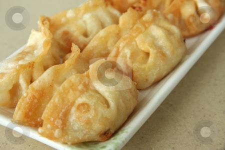 Japanese dumplings stock photo, Gyoza dumplings traditional japanese cuisine on white plate by Kheng Guan Toh
