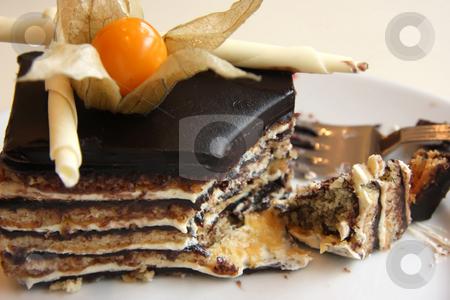 Opera cake stock photo, Layered opera chocolate cream cake garnished with flower by Kheng Guan Toh
