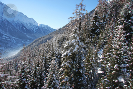 Chamonix forest mountain stock photo, Forest covered snowy mountains in Chamonix mountains of France by Kheng Guan Toh