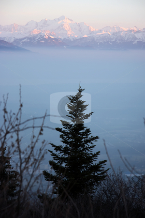 Alpine sunset stock photo, Sunset in the Alps with vegetation and mountain peaks by Kheng Guan Toh