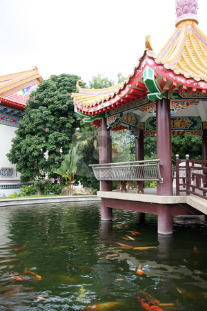 Temple pagoda stock photo, Traditional chinese temple pagoda over fish filled pond by Kheng Guan Toh