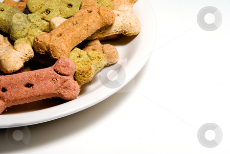 Dog Buscuits stock photo, Dog biscuits ready for consumption by a canine. by Robert Byron