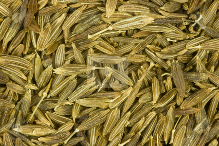 Close up of cumin seed stock photo, Close up of cumin seed the aromatic spice by Chris Pole