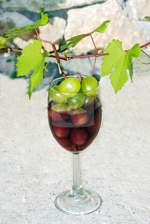 Vine shoot over wine glass stock photo, Green young vine shoot with red wine glass over stone fence by Julija Sapic