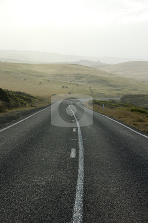 Misty Morning Country Road stock photo, A country road winds through farmland on a misty morning. by Lee Torrens