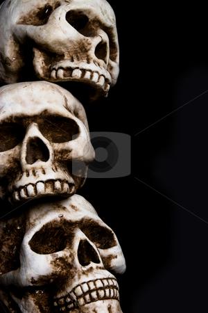 Skulls stock photo,  by Jose Wilson Araujo