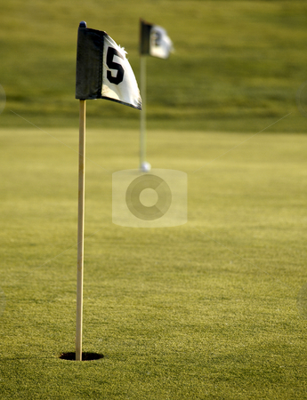 Golf course holes stock photo, Two black and white flags on a golf course by Laurent Dambies