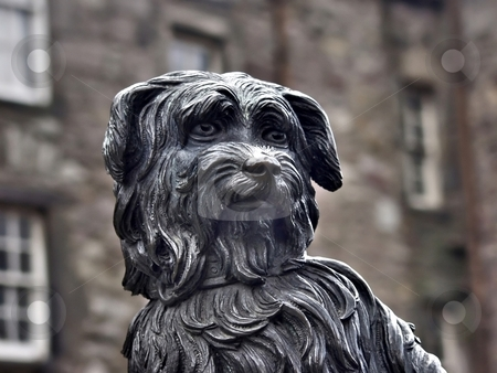 Dog statue stock photo, Greyfriar's Bobby Edinburgh famous dog by Laurent Dambies