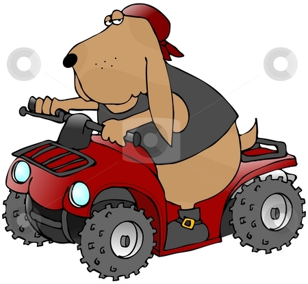 ATV Dog stock photo, This illustration depicts a hound dog riding a red ATV. by Dennis Cox