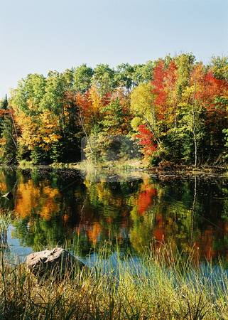 Scenic Ol' Miss_Autumn stock photo, The Mississippi River is enshrined in the Autumn splendor of the Minnesota north woods. by Bruce Peterson