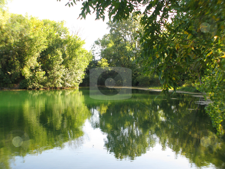 Foliage_still water stock photo, A quiet green scene of still water surrounded by foliage by Bruce Peterson