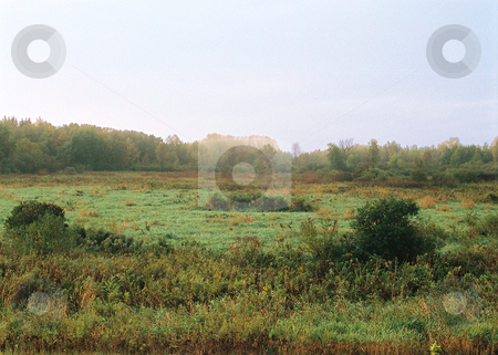 Deep wilderness scene_meadow_forest stock photo, The morning fog lifts from over the early autumn Wisconsin wilderness by Bruce Peterson