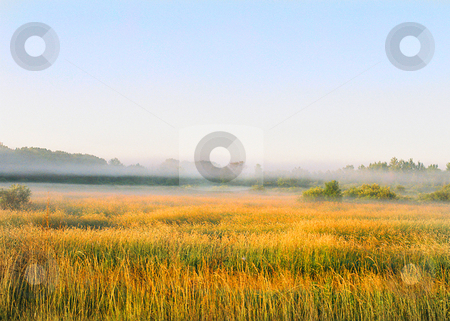 Deep wilderness scene_meadow_forest stock photo, Morning fog and dew cover the Wisconsin wilderness in early autumn. by Bruce Peterson