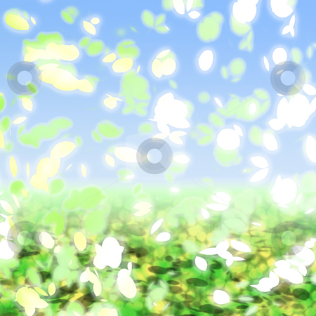Springtime petals stock photo, Falling leaves and petals springtime colors against blue sky by Kheng Guan Toh