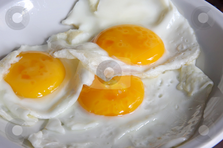 Fried eggs stock photo, Fried eggs whole sunny side up on white plate by Kheng Guan Toh