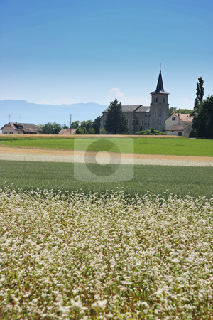 Country church stock photo, Country church in European farm countryside in summer by Kheng Guan Toh