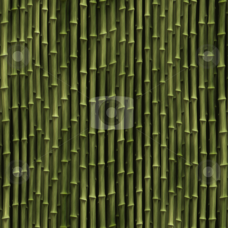Bamboo plants stock photo, Rendered illustration of bamboo plant stems vegetation by Kheng Guan Toh