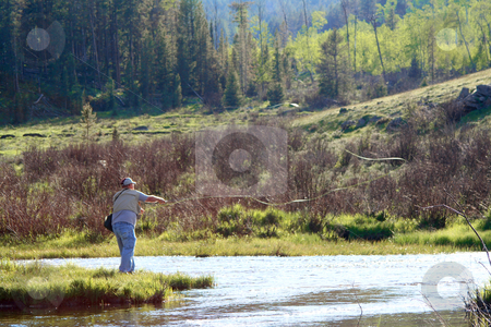 Jette Flyfishing 4 stock photo, Buffalo, WY resident Jeff Jette flyfishing for brook trout on the middle fork of Crazy Woman Creek in the Big Horn National Forest. by Clay Anthony
