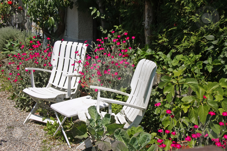 Garden chairs stock photo, White deck charis summertime in the garden by Kheng Guan Toh
