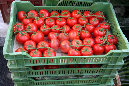 Tomatoes in crates stock photo, Fresh vine-ripened organic tomatoes in crates on sale in market by Kheng Guan Toh