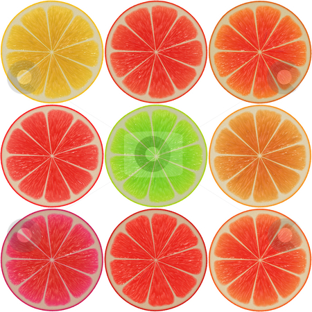 Citrus slices stock photo, Various citrus cross-section slices,  rendered illustration by Kheng Guan Toh