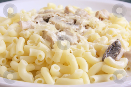 Macaroni and cheese stock photo, Macaroni and cheese with sliced mushrooms on plate by Kheng Guan Toh