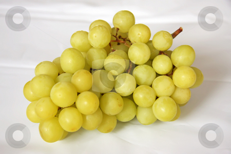 Fresh grapes stock photo, Whole bunch of fresh green grapes with stalk by Kheng Guan Toh