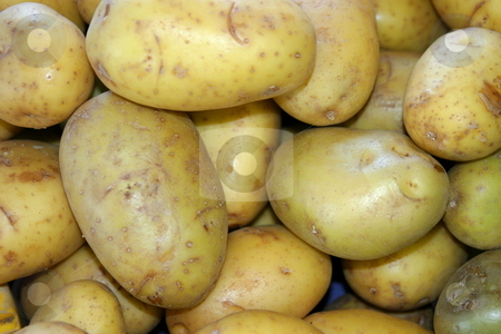 Potatoes stock photo, White potatoes in a pile at the farmers market. by Henrik Lehnerer