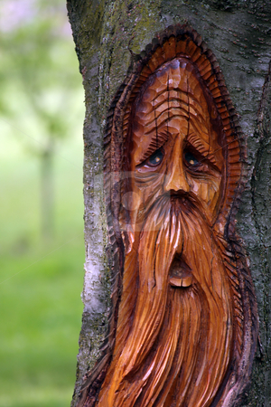 Spirit Of The Trees stock photo, Beautiful carving of a face on a tree against blurred background. by Megan Lorenz