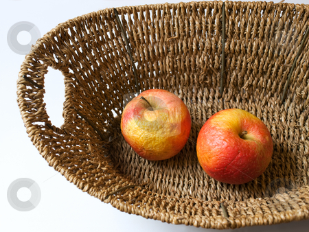 Old apple stock photo, Dead nature represent with two old apples. by Sinisa Botas
