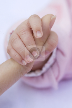 Baby Hand stock photo, Baby's hand holding an adult's finger by Inge Schepers