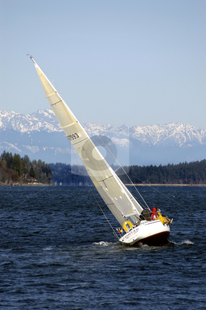 Sailing on Puget Sound 2 stock photo, With the Cascade Mountains in the background, this boat heads out on the course during a yacht race in Olympia, Wa. No release. by Tim Thompson