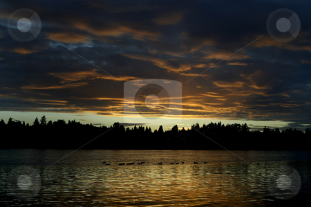 Fire in the sky sunset stock photo, October 10, 2003 : A golden sunset lit up the skies over Dyes Inlet near Lions Park in Bremerton, Washington.  A flock of ducks could be seen across the water reflecting on the water. by Jesse Beals