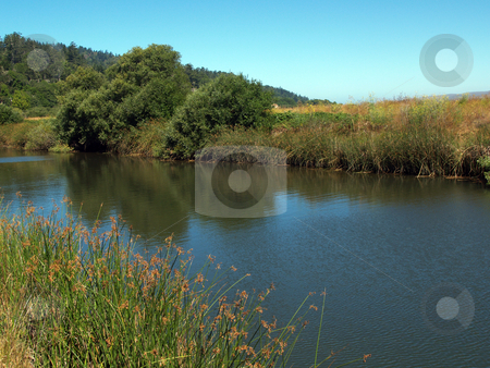 Water way amid green grass and trees with blue sky stock photo, Water way with both banks of grass and trees blue sky by Jeff Cleveland