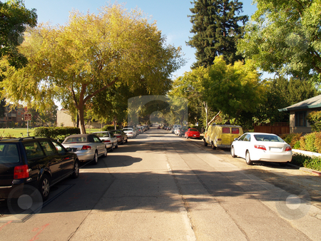 Tree covered street in morning light with cars stock photo, Cars parked on one way tree covered street suburbia by Jeff Cleveland